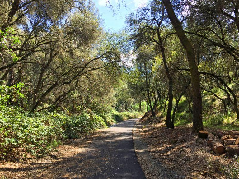 Dragoon Gulch Trail Sonora California